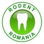 Dentista Romania
